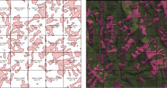 土砂災害発生前後2時期の航空写真を用いた斜面崩壊の差分抽出